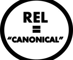 """La etiqueta """"noindex"""" y el atributo """"canonical"""""""