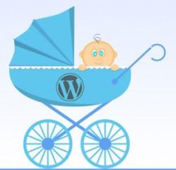 Qué es y Como crear un tema hijo de WordPress