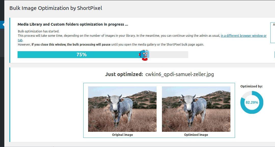 Optimitza el teu lloc web carregant les imatges des d'un CDN