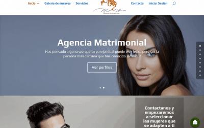 Diseño de la agencia matrimonial Mar de Amor