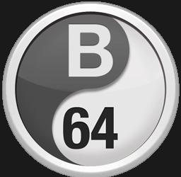Pros i contres d'inserir imatges codificades amb base64