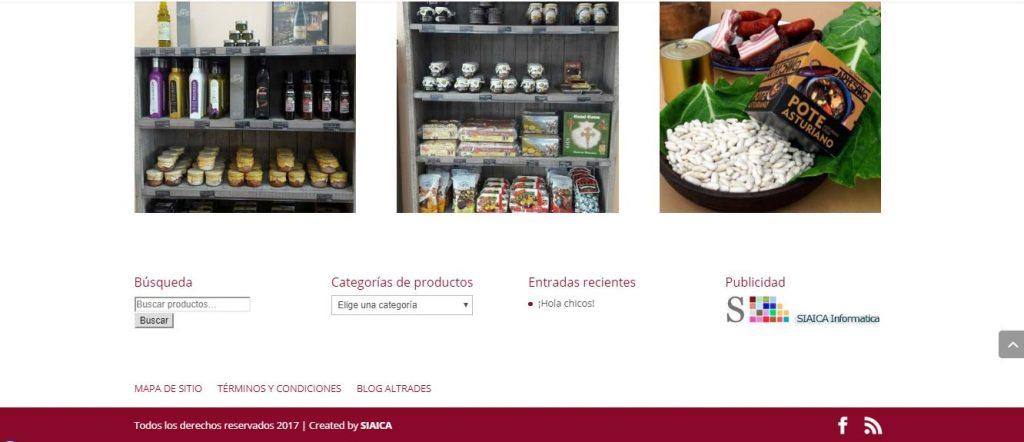 Captura de pantalla del diseño del pié de la página de inicio