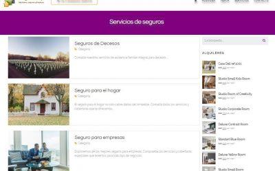 Construcción de la web SegurLimp
