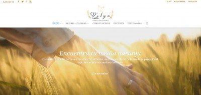 Diseño Nuevo de Agencia Matrimonial Volga