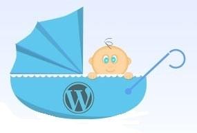Crear un tema hijo para modificar themes de WordPress