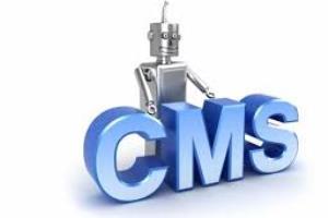 ¿Empreses importants que utilitzen WordPress com CMS?